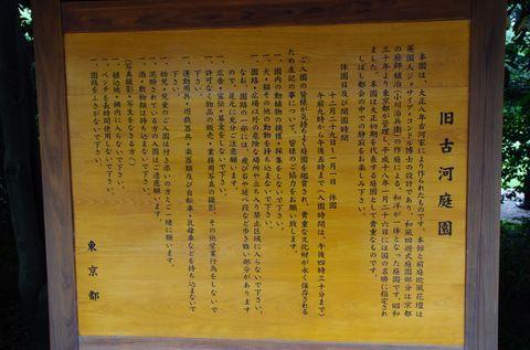 201106_imgp7951_1400